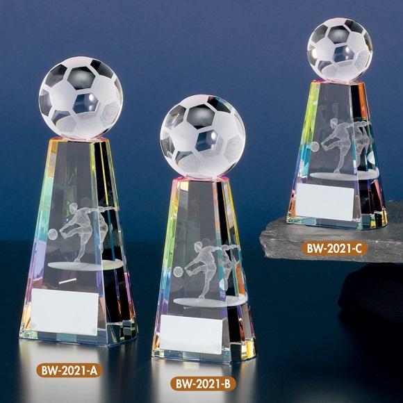 画像1: サッカーブロンズ:BW-2021 (1)